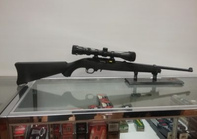 Leaves and Limbs - Ruger 10/22 Semi Auto With Scope and Hard Case