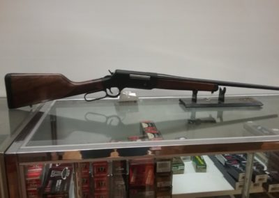 Leaves and Limbs - 243 Henry Lever Action