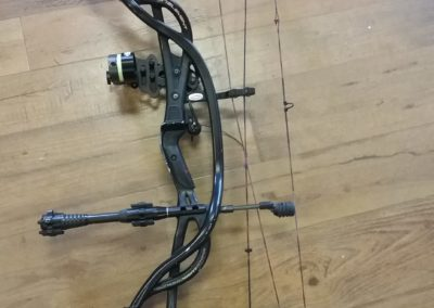 Leaves & Limbs - Used Hoyt Carbon Bow
